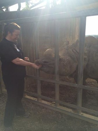 Zookeeper for a day at Whipsnade zoo: open up!