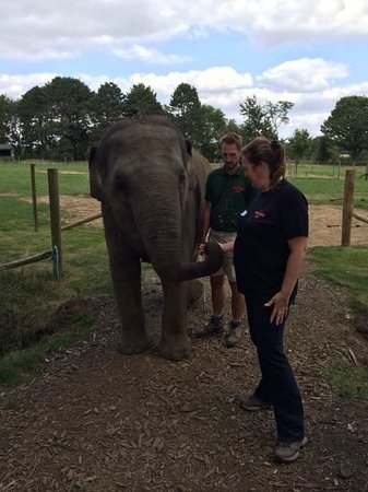 Zookeeper for a day at Whipsnade zoo: so cute
