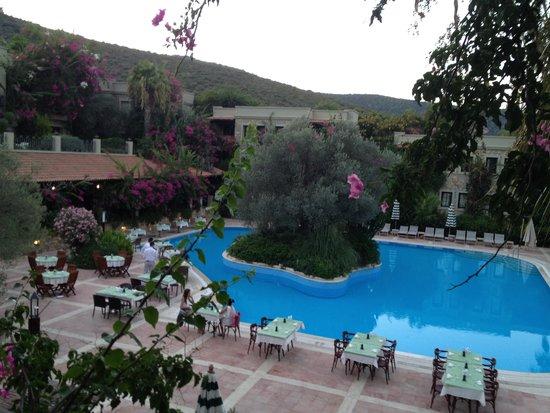 Hotel Zeytinada: Uitzicht vanaf balkon kamer 1804