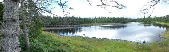 Hawke's Bay, Canadá: panoramic shot the lake
