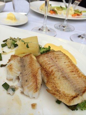 Pollowaari: Best of fish