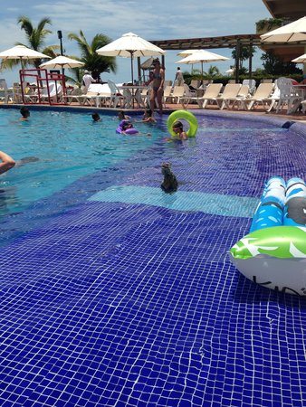 Velas Vallarta: Iguanas swimming