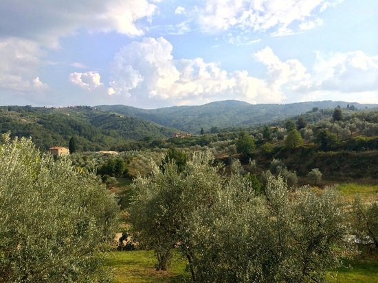 Fontebussi Tuscan Resort: View back to the resort