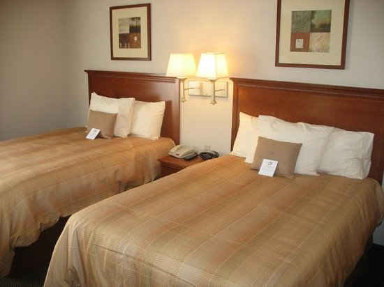 Candlewood Suites Knoxville Airport-Alcoa: Studio Suite with Two Double Beds