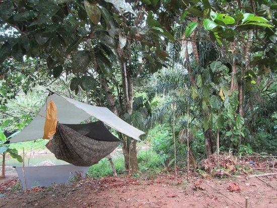 Darien Gap Panama: night time paradise