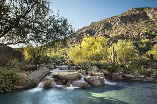 The Canyon Suites at The Phoenician: Canyon Waterfall