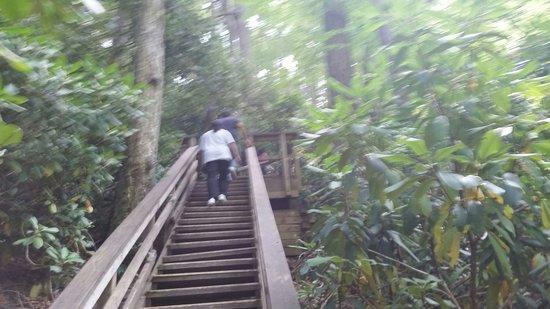 Dingmans Falls : Steps to walk up to the top