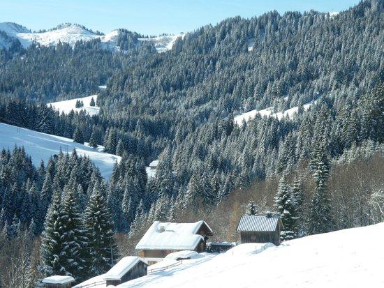 Hotel Alpen Roc: Morzine superbe vue