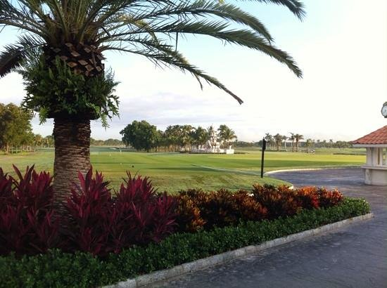Trump National Doral Golf Course: Early morning tee time