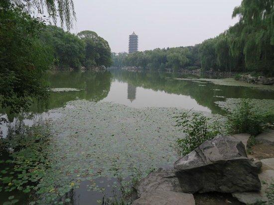Peking University (Beijing Da Xue): Peking University Main Lake