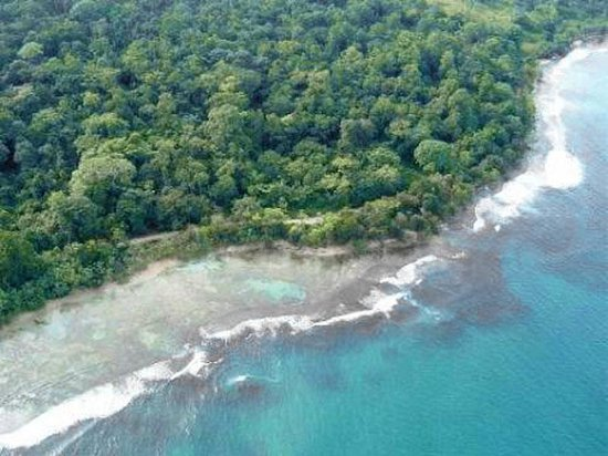 Monkey Tree Casitas : excellent swimming and snorkeling