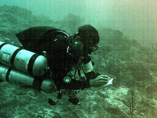XTC Dive Center: Ollie the tec instructor