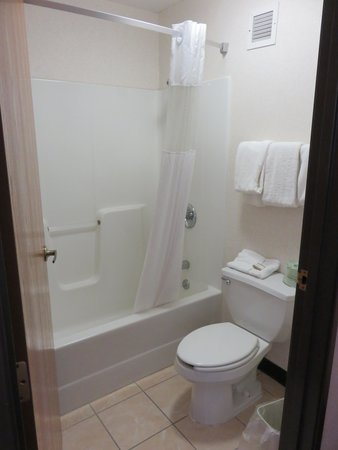 Baymont Inn & Suites Pella: bathroom