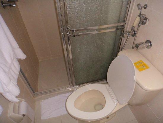 Euro Hotel: la ducha