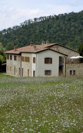 Agriturismo Le Fornaci: The Farmhouse, showing the Terrace