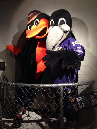 Sports Legends Museum at Camden Yards: My two favorite birds of B More!