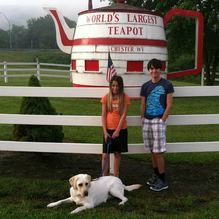 Chester, WV: Very cute, dog-friendly attraction
