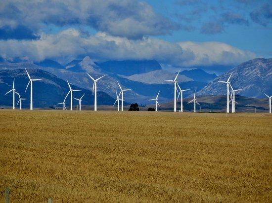 Super 8 Pincher Creek AB : Pincher Creek has a lot of windmills
