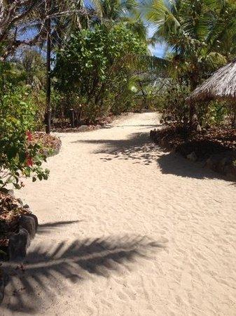 Navini Island Resort: island path