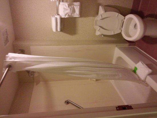 Red Lion Inn & Suites Denver Airport : bathroom