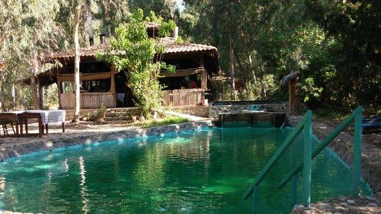 Pastoral Vadi Ecologic Life Farm: Doğal havuz