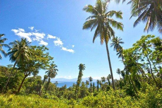 Two Fish Divers Bunaken: Bunaken Island
