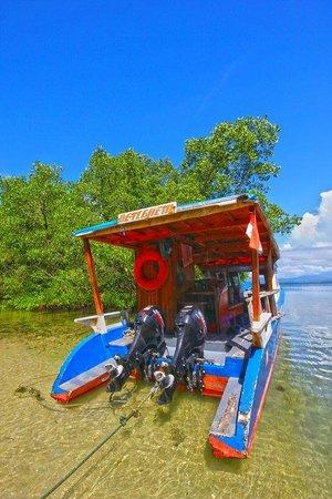 Two Fish Divers Bunaken: Dive boats
