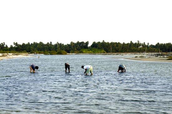 Udekki: Clam digging with the locals