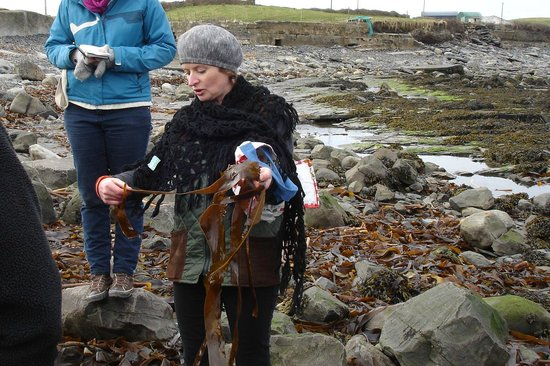 Sea View House Doolin : Collecting seaweed with Una