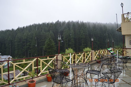 Snow Valley Resorts: Pine forest view