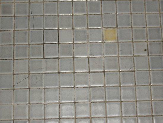 Hotel Gergovia : Le sol de la salle de bain