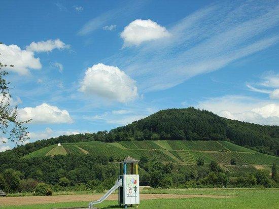 Landhotel Laube: Zimmeraussicht Norden