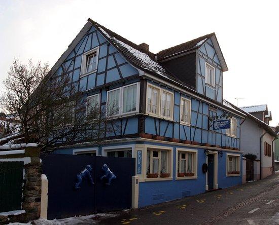blauer aff auerbach