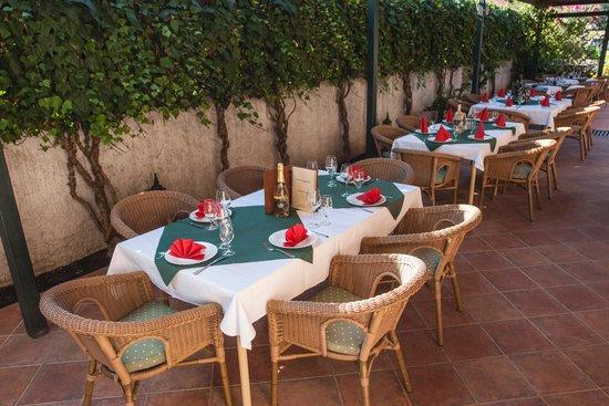 Hotel Laguna: Cozy summer garden