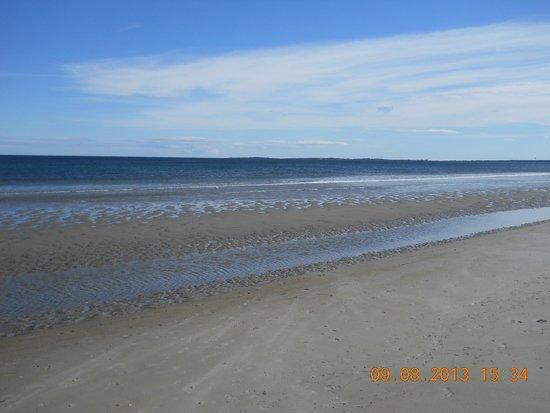Normandie Oceanfront Motor Inn: Ocean view when tide is out