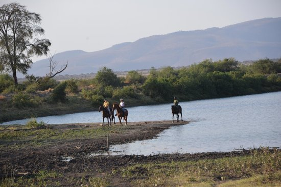 Manyara Ranch Conservancy: Riding by the dam