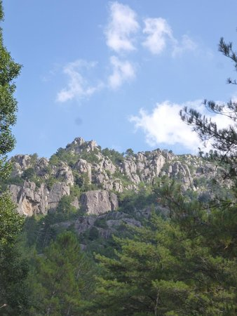 Vallee du Tavignano