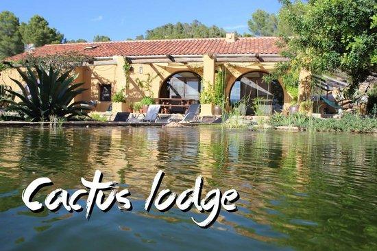 Cactus Lodge Guest House