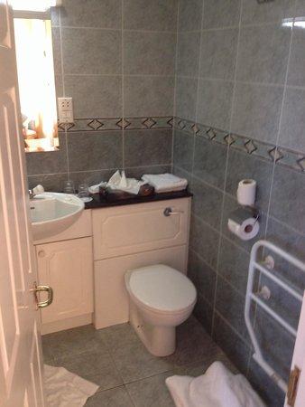 Sligo City Hotel: Bathroom