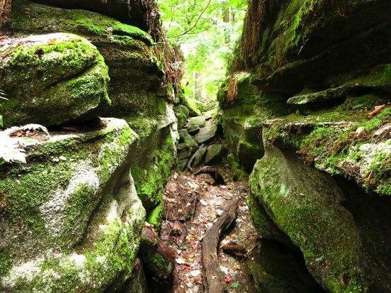 Panama Rocks Scenic Park: Passageways