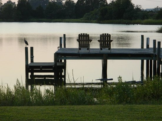The Inn at Tabbs Creek Waterfront B&B: Daily water view