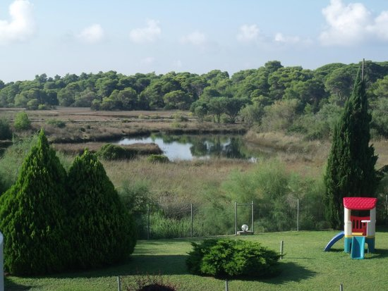Verde al Mare Hotel: Forest and lagoon