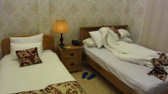 Luan Vu Hotel: お部屋