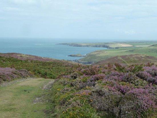 Llyn Coastal Path: One of the many Coastal Walks