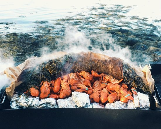 Cabbage Island Clambakes: lobsters
