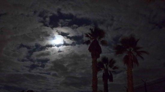 Bungalows Vista Oasis Apartments: Night time view