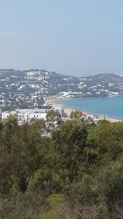 Hotel  Sidi Bou Said : View during day from the swimming pool