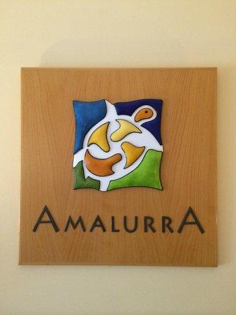 Amalurra