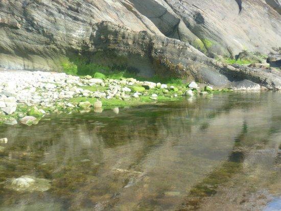 Combe Martin Beach Holiday Park: Combe Martin Rock Pools