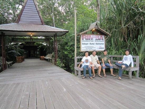 Rimba Orangutan Eco Lodge: Rimba Eco Lodge, Borneo